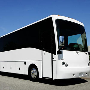 50 Passenger Party Bus Rental