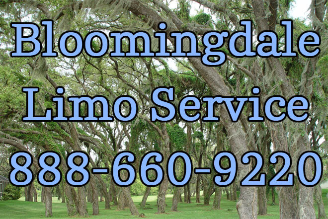 Bloomingdale Limo Service