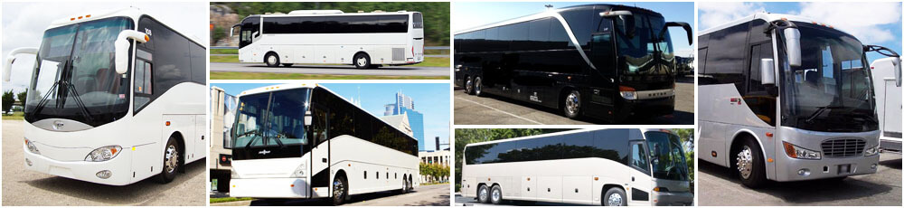 Stockton Charter Bus Fleet