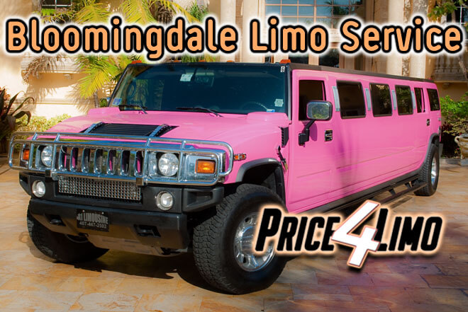 Limo Service in Bloomingdale