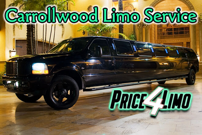 Limo Service in Carrollwood