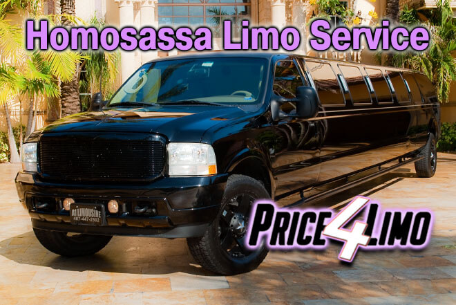 Limo Service in Homosassa