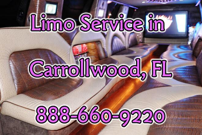 Limousine Service in Carrollwood