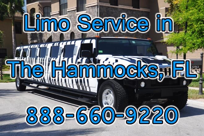 Limousine Service in The Hammocks