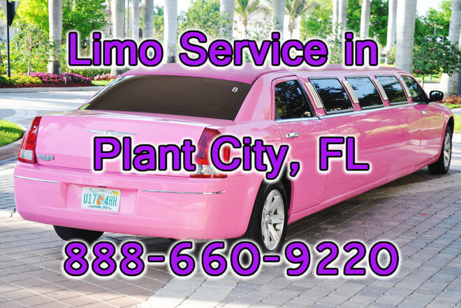Limousine Service in Plant City