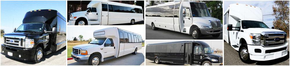 Parker Mini Buses