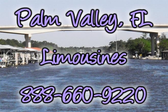 Palm Valley Limo Service