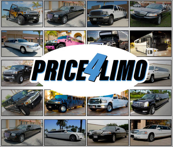 Limo Service & Party Bus Rentals cover image