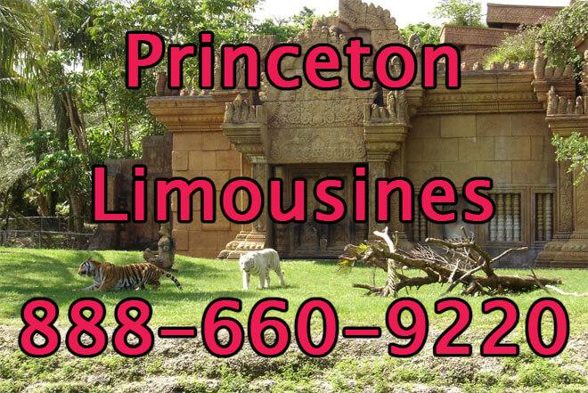Princeton Limousine Service