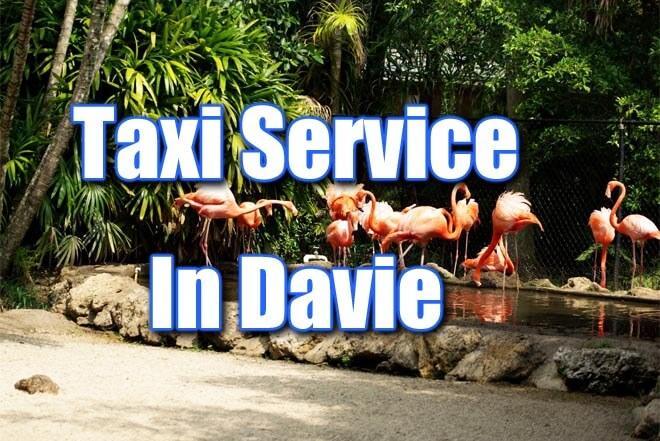 Sedan Service in Davie