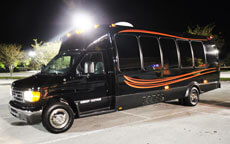 15 Passenger Party Bus
