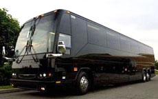 50 Passenger Party Bus