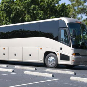 Wet Camp Village Charter Buses
