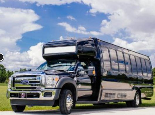 Party Bus Rental Sun City, AZ Party Bus / Limo Bus Black 22 Passenger #12813