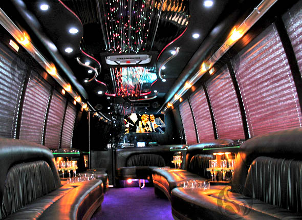 Party Bus Rental Glendale, AZ Party Bus / Limo Bus Black 20 Passenger #13679