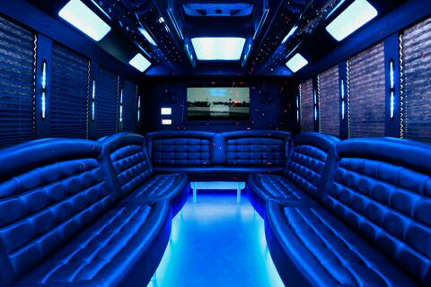 Charter Bus Tucson, AZ Party Bus / Limo Bus Black 20 Passenger #15239