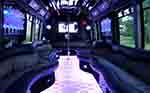 22 Passenger Party Bus interior