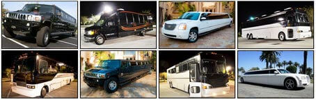 Parker Party Buses and Limos